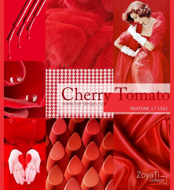 Cherry-Tomato1.jpg